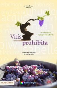 Vitis Prohibita (2019)