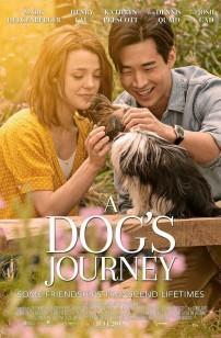 Mes autres vies de chien (2019)