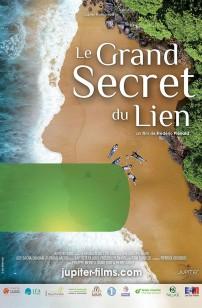 Le Grand Secret du Lien (2020)